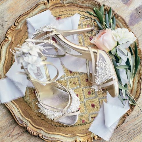 wedding-chicks-savrani